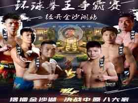 2020年11月14日武林风录播金沙湖站 - 直播[视频] 王鹏飞vs位宁辉